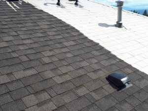 Roof Moss Removal Nanaimo Roof Demossing Roof Cleaning